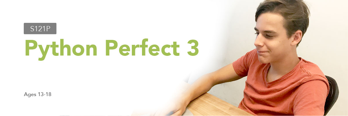 Banner - S121P Python Perfect 3
